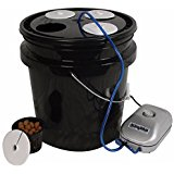HTGSupply 5-Gallon Bubble Boy 4 Banger Deep Water Culture (DWC)