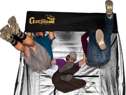 gorilla grow tents review