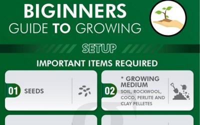 Indoor Growing Set-up Infographic – Beginners Guide