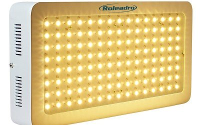 Roleadro 2nd Generation – LED Grow Light Review