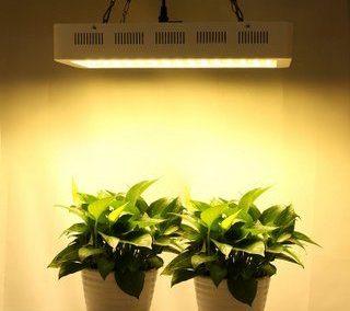 Roleadro 600w best led grow light