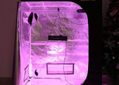 VIPARSPECTRA Reflective 600D Mylar, best Grow Tent