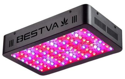 Bestva 1000w Led Grow Light Review – Great Affordable Choice