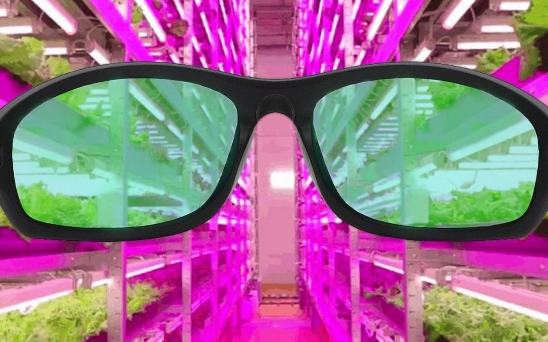 Best Grow Room Glasses