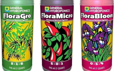 8 Best Nutrients for Hydroponics – Reviews & Buyers Guide