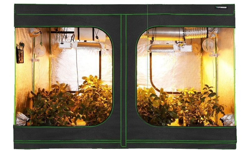 Best Grow Tent Setup Guide | Build the Perfect Indoor Grow Tent