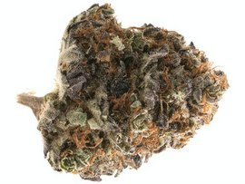 GreenCrack strain