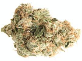 Super Sour Diesel medical strain