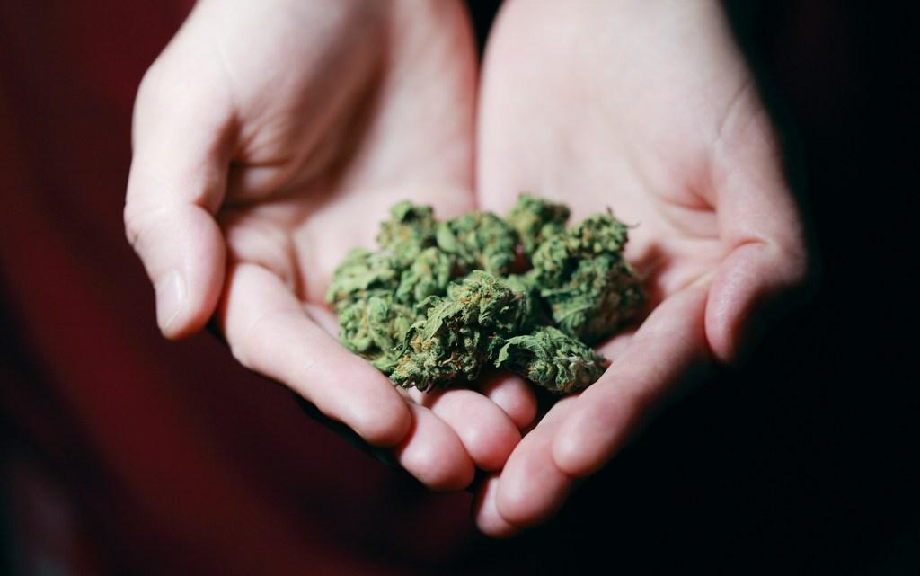 cannabis a cure or a myth