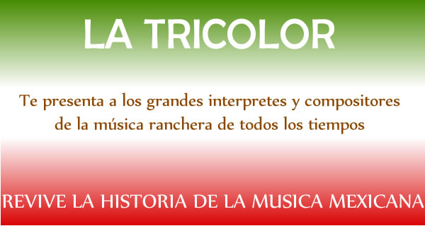 Tricolor Banner.2