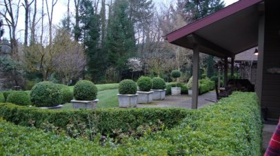 topiary-picures-5