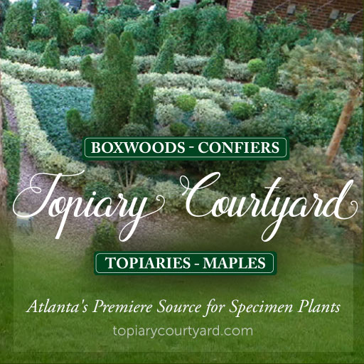 Topiary Courtyard