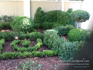 topiary-courtyard-product-w71
