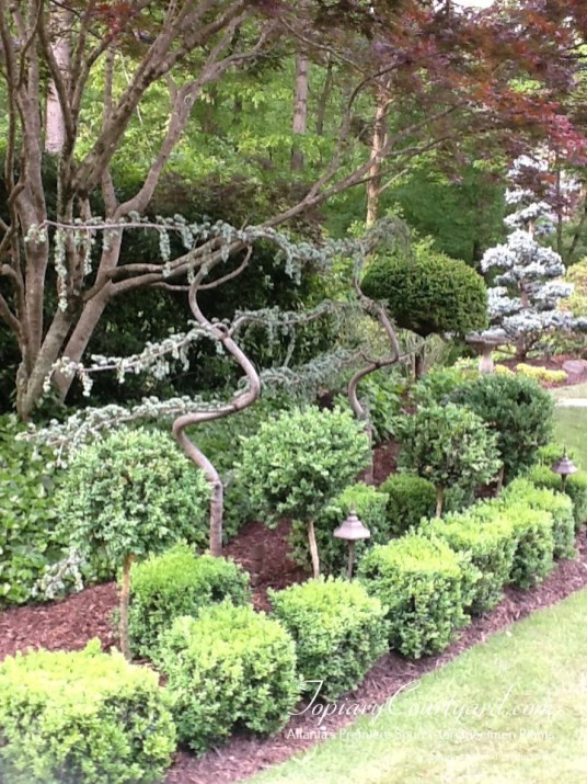 topiary-courtyard-product-w84