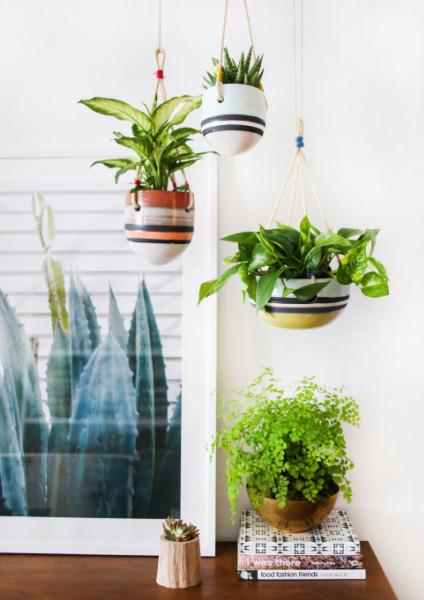 Indoor Hanging Garden Tigris Hanging Garden Pot