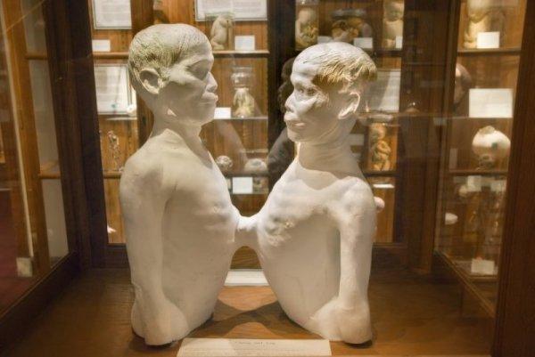 ТОП-10 самых необычных музеев мира с фото и описанием