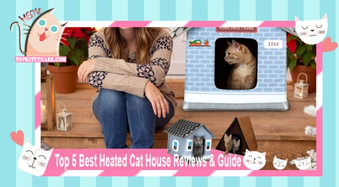 Top 5 Best Heated Cat House Reviews