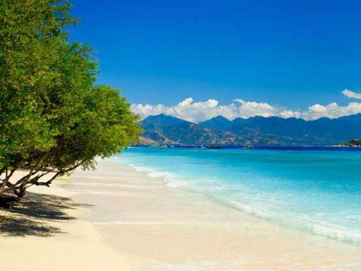 Sire Beach - Perfect For A Trip With Your Family - TopLombok.com