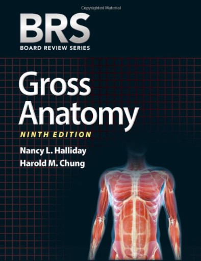Gross anatomy pdf (BRS) 9th edition free download
