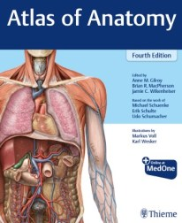 Atlas of Anatomy pdf