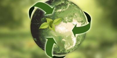 Entretien Ménager Bio: L'importance d'utiliser des produits de Nettoyage écologiques et des actions responsables qui respectent l'environnement.