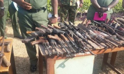 Presidential Committee On Small Arms To Be Upgraded – Minister