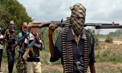 Armed bandits kill six, injure others in Plateau community-TopNaija.ng