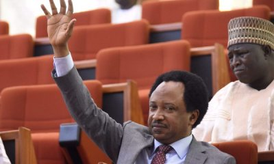 PDP should recall ALL past members for Buhari to probe - Shehu Sani