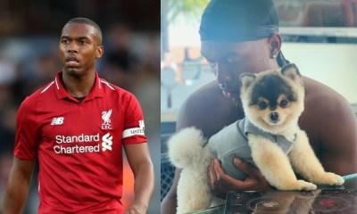 Find Daniel Sturridge's dog and get £30,000