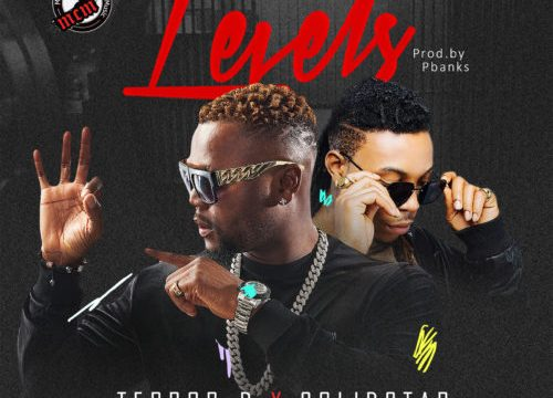 Levvels by Terror-D ft Solidstar download mp3