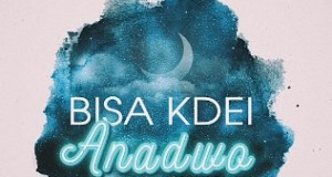DOWNLOAD MP3 Bisa Kdei Anadwo