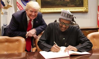 trump-and-buhari topnaija