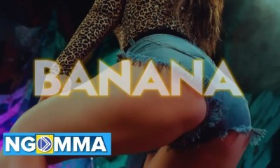Willy Paul – Banana [Audio + Video]