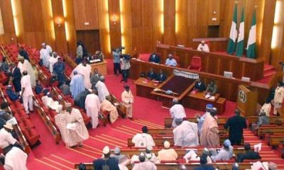 Senate confirms Akinkugbe, Adesina, 37 others as ambassadors topnaija.ng