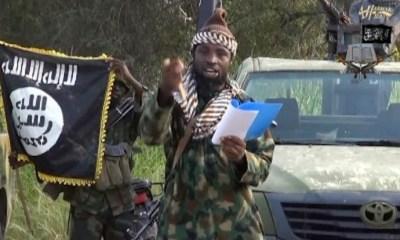 Notorious Boko Haram leader, Shekau is dead