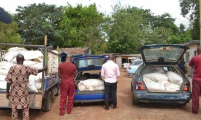 Three Oyo State officials arrested by NSCDC for allegedly stealing COVID-19 palliatives-TopNaija.ng