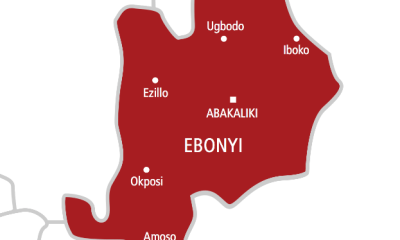 I coordinated attacks on cops, stations, INEC facilities - Ebonyi teenager