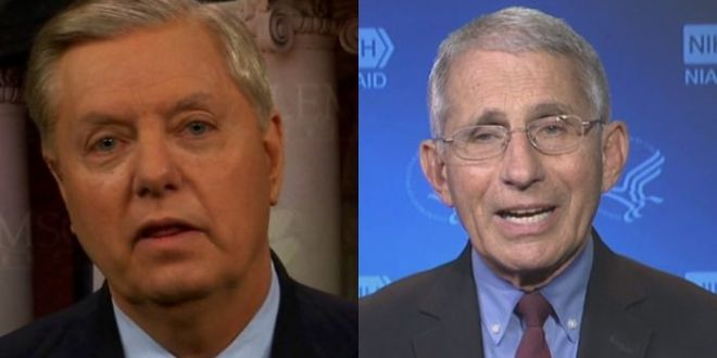 Lindsey Graham Torches Fauci – Says He Should Be Calling For Migration Programs To Be Shut Down
