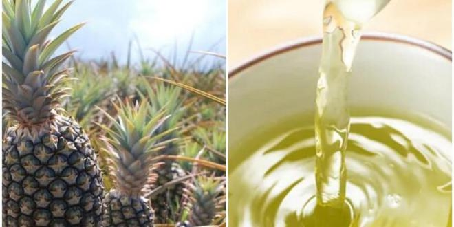 Natural remedies: How to treat bad mouth odor and have a fresh breath