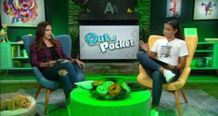 Out of Pocket plays red light green light with a twist - ESPN Video