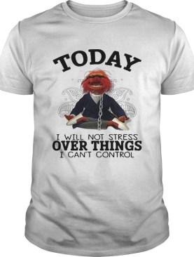 Muppet today I will not stress over things I cant control shirt