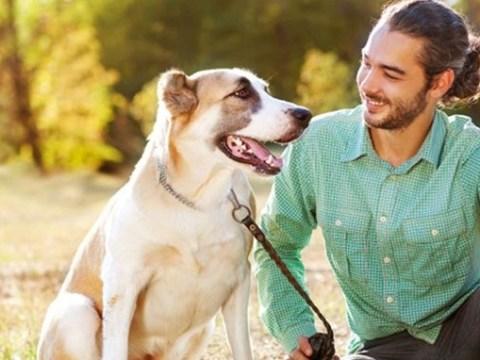 dog with man