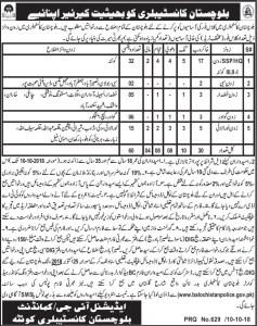 Jobs in Baluchistan