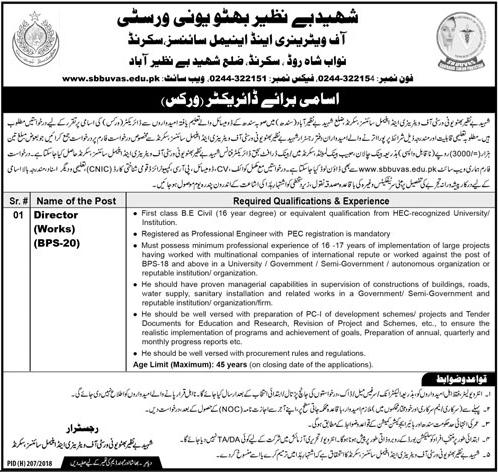 shaheed benazir bhutto university jobs 2018