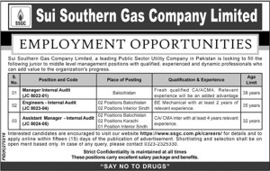 Jobs in Sui Southern Gas Company 2019