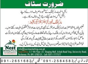 Marketing staff jobs 2019