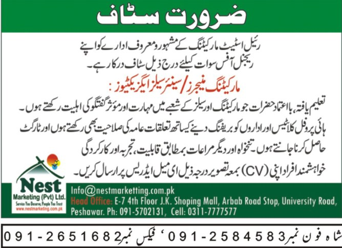Marketing staff jobs 2019