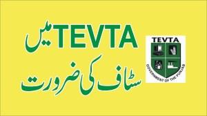 jobs in TEVTA