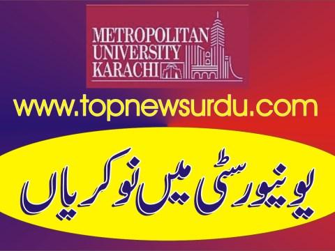 jobs in university