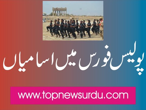 jobs in police force 2019
